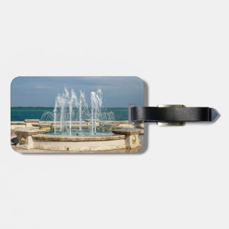 Foutain river sky water coral tag for luggage