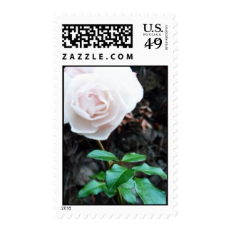 Fowers by Marryelle Postage Stamp