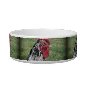 Fowl Face Cat Water Bowl