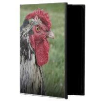Fowl Face Powis iPad Air 2 Case
