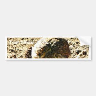 Fowl Of Some Kind Bumper Sticker
