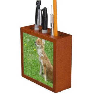 fox-7 pencil holder