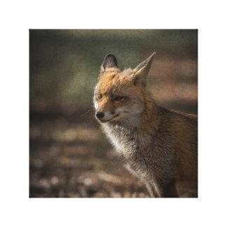 Fox adiós impresión en lienzo estirada