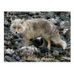Fox Aleutian, isla de Unalaska Postales