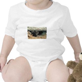 Fox and Den Baby Bodysuit