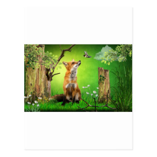 fox and the humming bird postcard