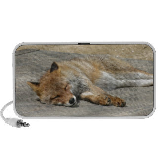Fox Animal Office Shower Party Art iPhone Speakers