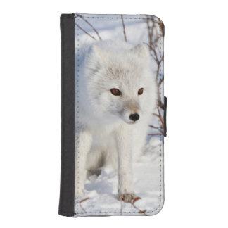 Fox ártico, área de la gestión de la fauna de fundas tipo billetera para iPhone 5