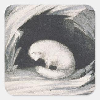 Fox ártico, de la 'narrativa de un segundo viaje pegatina cuadrada