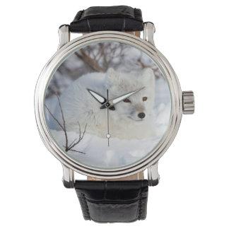 Fox ártico en invierno reloj de mano