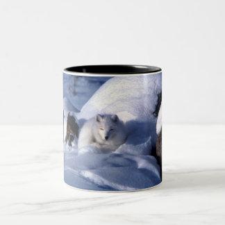 Fox ártico en nieve taza dos tonos