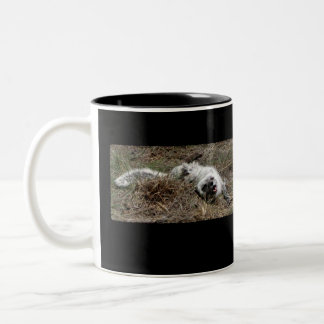Fox ártico juguetón taza de dos tonos
