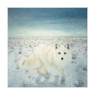 Fox ártico impresión de lienzo