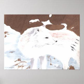 Fox ártico póster