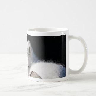 Fox ártico taza de café