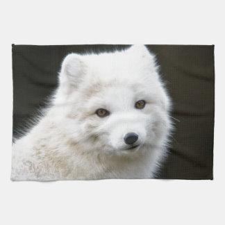 Fox ártico toallas de cocina
