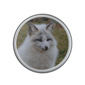 Fox blanco adorable altavoz bluetooth