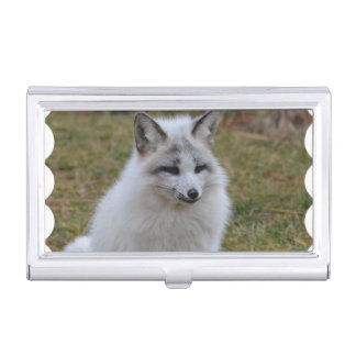 Fox blanco adorable cajas de tarjetas de presentación