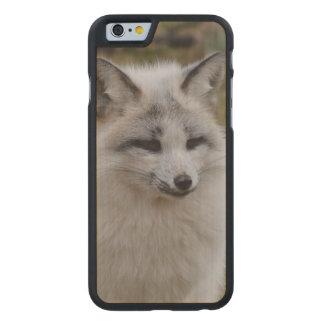 Fox blanco adorable funda de iPhone 6 carved® slim de arce