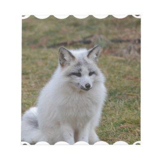 Fox blanco adorable libreta para notas