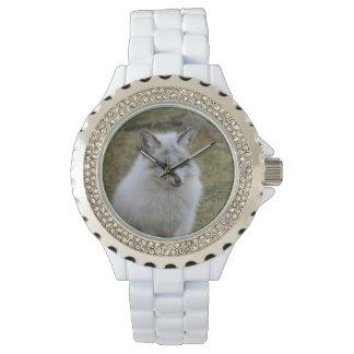 Fox blanco adorable relojes de pulsera