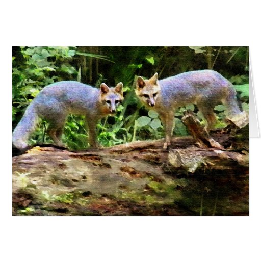 FOX BOOKENDS GREETING CARDS