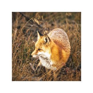 fox canvas print, foxy decor, fox cub, wall art