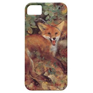 Fox iPhone 5 Cases