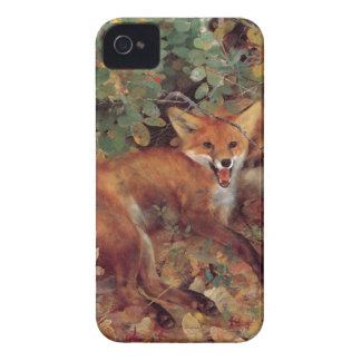 Fox iPhone 4 Covers