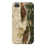 Fox colored sparrow iPhone 4/4S cover
