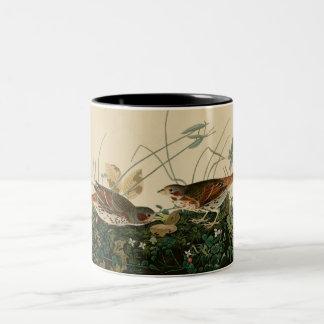 Fox colored sparrow Two-Tone coffee mug