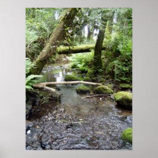 Fox Creek, Rainier, Oregon. Print