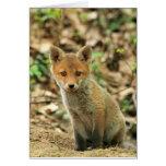 Hand shaped Fox Cub Card - blank for all occasions - custom