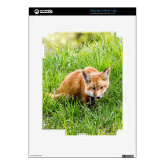 Fox Cub Decals For The iPad 2