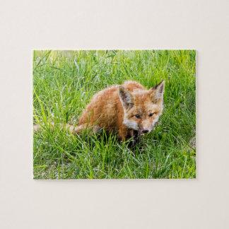 Fox Cub Puzzles