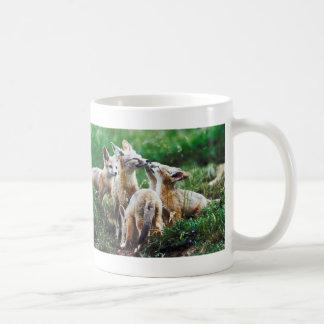 Fox Cubs Classic White Coffee Mug