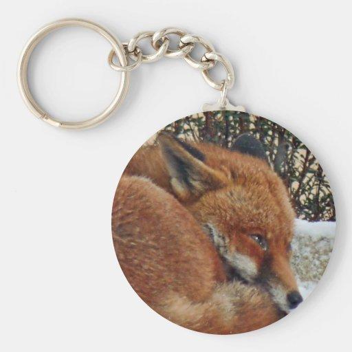 Fox day dreaming basic round button keychain