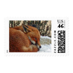 Fox day dreaming stamps