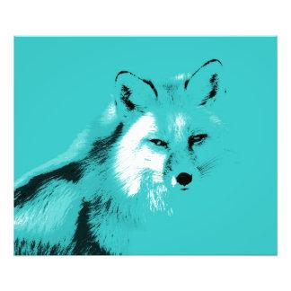 Fox de azules turquesas hermoso fotografías