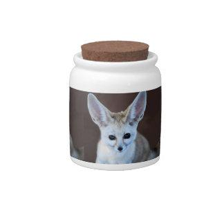 Fox de Fennec Jarras Para Caramelos