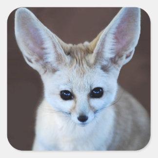 Fox de Fennec Pegatina Cuadrada