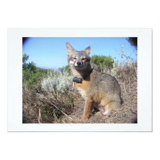 Fox de isla femenino de canal invitación 12,7 x 17,8 cm