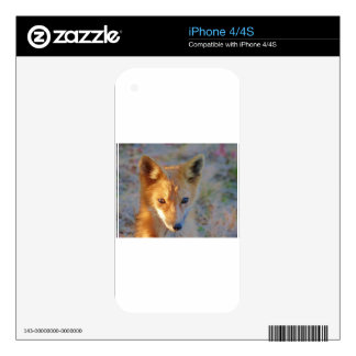 fox decal for iPhone 4