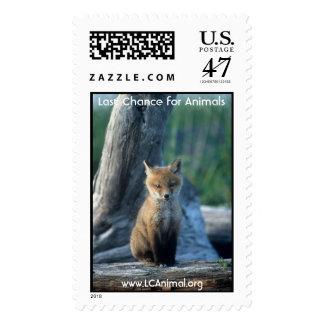 Fox del bebé timbre postal