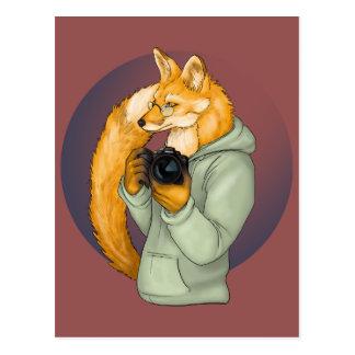 Fox del fotógrafo del inconformista postales