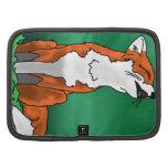 Fox del grito