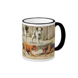 Fox del vintage, Fox del alambre, Galés, y terrier Taza A Dos Colores