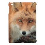 Fox Den Cover For The iPad Mini