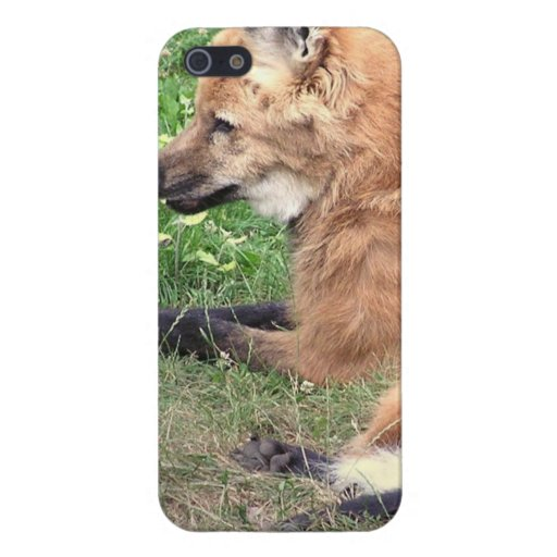 Fox Den Covers For iPhone 5