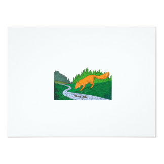 Fox Drinking River Woods Creek Drawing Card